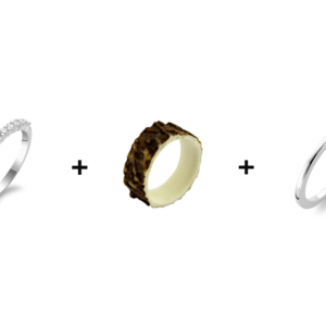 Hirschhorn_Ring Set